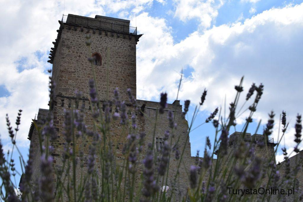 Zamek Diosgyor (11)