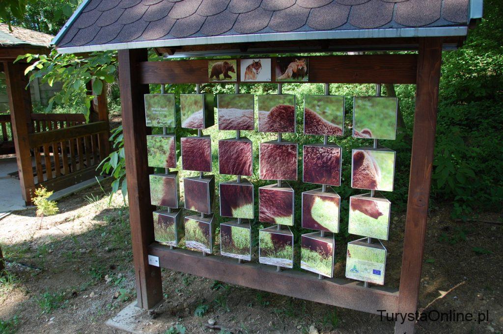 zoo Bojnice 19